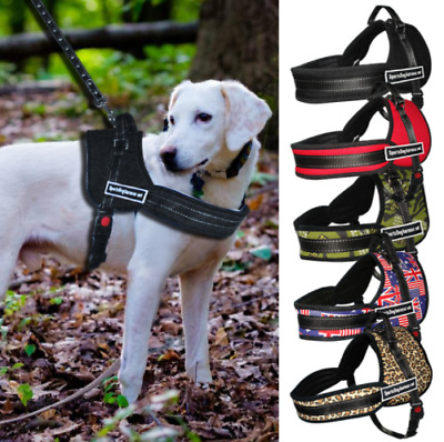 Power Harness forte & Regolabile Riflettente Dog Puppy imbracature 4 COLORI CANE