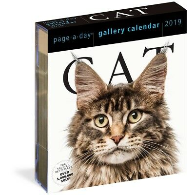 2019 Cat Gallery Desk Calendar, Assorted Cats by Workman Publishing