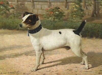 Fine Large 19th Century Jack Russell Terrier Dog Portrait Antique Oil Painting