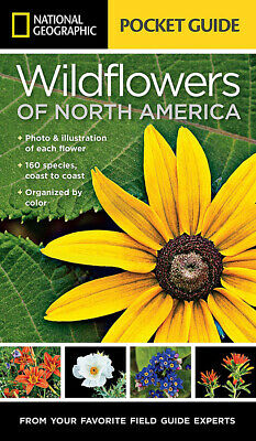 NEW National Geographic Pocket Guide to Wildflowers of North America Book
