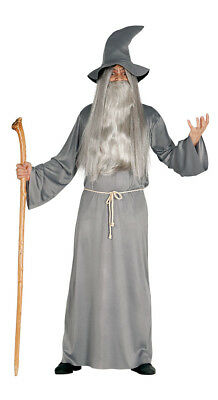 Mens Wizard Costume Fancy Dress Adult Grey Medieval Merlin Outfit & Hat 42-44