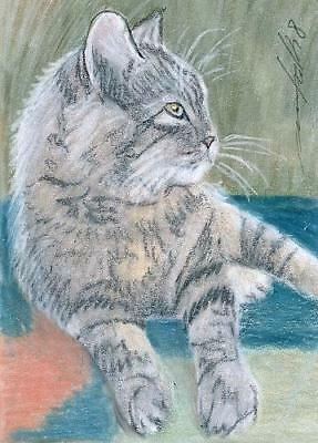 ACEO original pastel drawing  tabby cat by Anna Hoff