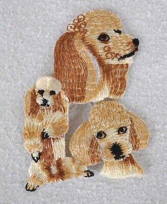 ***embroidered*** Iron On Patch Dog Detailed Top Quality Poodle *free Shipping*