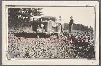 Vintage Car Photo 1936 Ford Free Shipping 891017