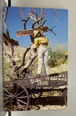 Arizona AZ Tortilla Flat Hanging Tree Postcard Old Vintage Card View Standard PC