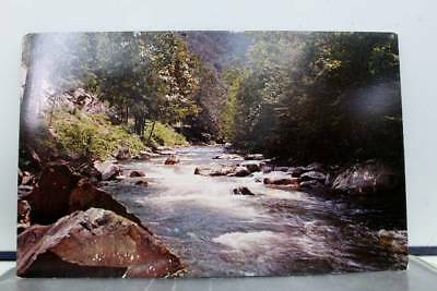 Tennessee TN Little River Great Smoky Mountain Park Postcard Old Vintage Card PC