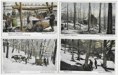 1920 VERMONT Making Maple Sugar Wonderful Lot of 7 Uused Post Cards #207