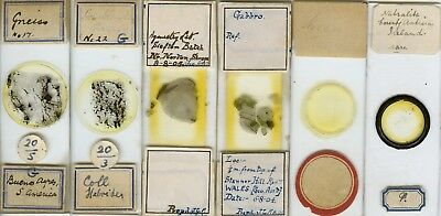 6 Mineral Microscope Slides