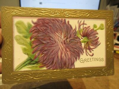 Vintage Old Antique Victorian Era Postcard Bucyrus Ohio Chrysanthemum Flowers