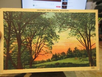 Vintage Old Postcard MISSISSIPPI Greetings from Corinth Generic Rural SUnset Sky