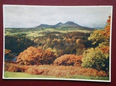 Postcard Berwickshire Medici Soc - 'scots View' Over The Loop Of Tweed