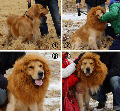 Lion Wigs Mane Hair for Large Pet Dog Cat Party Fancy Dress Clothes Costume