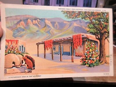 Vintage Old Postcard NEW MEXICO Raton Chili Red Pepper Bread Kilns Indian Women