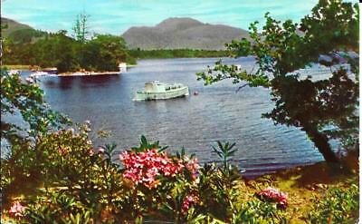 Ben Lomond from Luss - Argyle & Bute -Posted Postcard