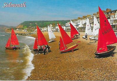 Sidmouth - Yachts on Beach - Posted Postcard