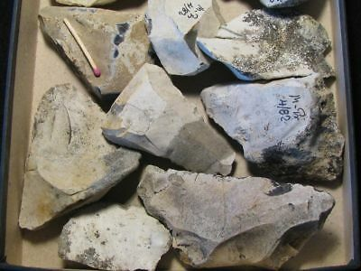 50.000Y.o: 12! Artifacts Neanderthal Man Flint Stone Age Paleolithic Mousterian