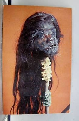 Ohio OH Cleveland Museum Natural History Wade Park Shrunken Heads Postcard Old