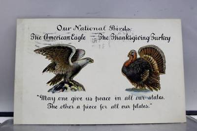 United States of America National Birds American Eagle Turkey Postcard Old View