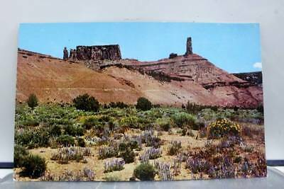 Utah UT Arches Park Postcard Old Vintage Card View Standard Souvenir Postal Post