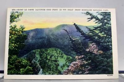 Great Smoky Mountain Park Mt Le Conte Postcard Old Vintage Card View Standard PC