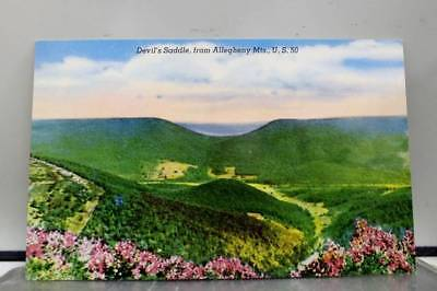 Scenic Devils Saddle Allegheny Mountains Postcard Old Vintage Card View Standard