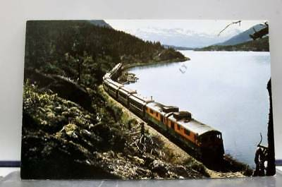 Scenic White Pass Yukon Railroad Postcard Old Vintage Card View Standard Post PC