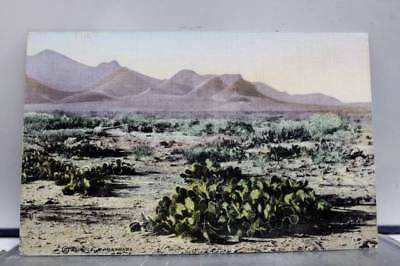 Scenic Desert Postcard Old Vintage Card View Standard Souvenir Postal Post PC