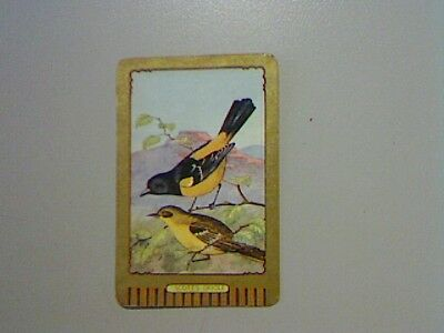 """1 Swap/Playing Card - Coles Named Series """"Scott's Oriole"""""""