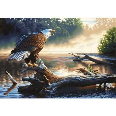 Paintsworks Paint By Numbers Eagle Hunter Paint Set - Number Kit Dpw91379 50cm