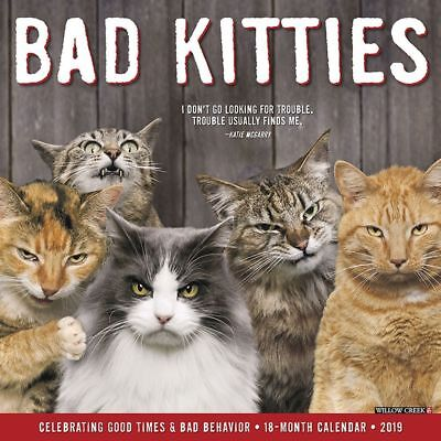 Just Bad Kitties 2019 Wall Calendar, Funny Cats by Willow Creek Press