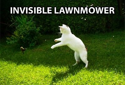 Funny Cat Meme Refrigerator Magnet (3 x 2) Invisible Lawnmower White Collectible