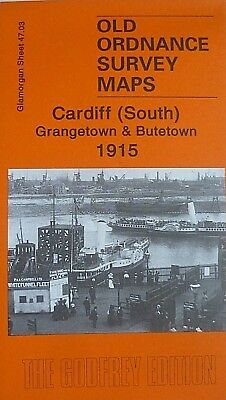 Old Ordnance Survey Maps Cardiff  South Grangetown & Butetown 1915 Godfrey Edit