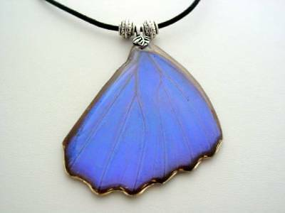 Reversible Electric Blue Morpho Hindwing Real Butterfly Wing Necklace BM5