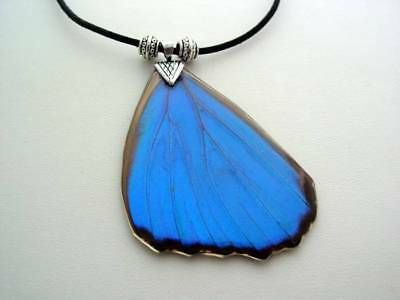 Reversible Electric Blue Morpho Hindwing Real Butterfly Wing Necklace BM7