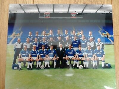1994/95 - EVERTON - 10x8 TEAM PICTURE - ORIGINAL PHOTOGRAPH - MIKE WALKER