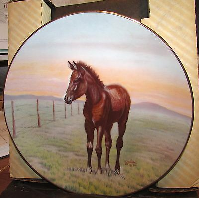 The Thoroughbred by Perillo LOW #954/5,000 Collector Horse Plate Baby Foal Mint!