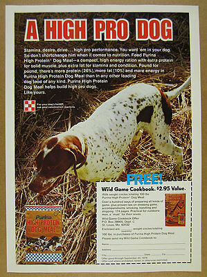1977 English Pointer photo Purina Dog Food vintage print Ad