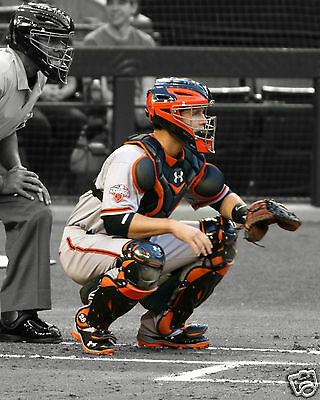 Buster Posey Catcher San Francisco Giants 8 x 10 Photo Photograph Picture