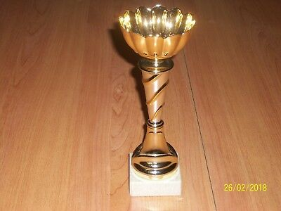 Coupe Trophee Sportive