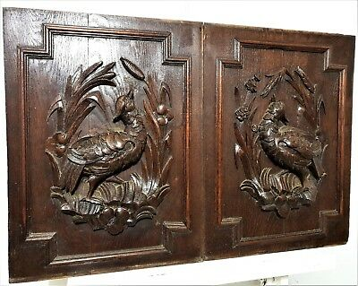 Pair bird hunting panel Antique french hand carved wood architectural salvage