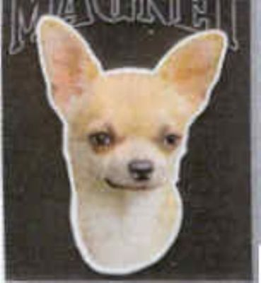 Car Magnet Die-cut CHIHUAHUA Dog Breed discontinued CLEARANCE