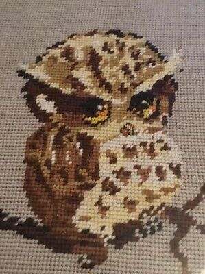 Vintage Retro Glass Framed Owl Tapestry Needlepoint Vintage Shop Display Kitsch