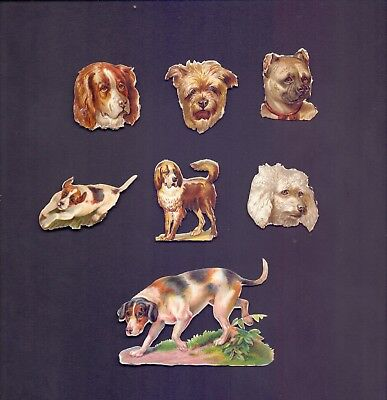 7 Nice Vintage,Scraps Largest 85 x 55 mm Dogs    (SB 12)
