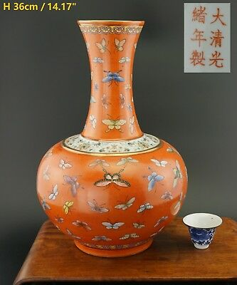 FINE! Antique Chinese Porcelain Famille Rose Coral 100 Butterflies Vase GUANGXU