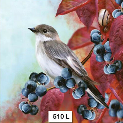 (510) TWO Individual Paper Luncheon Decoupage Napkins - BIRD BLUEBERRIES AUTUMN