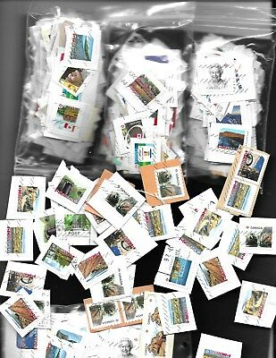Lot # 212    Canada  1000 Stamps Small  ( P )  Only On And Off Paper