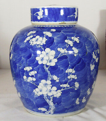 Fine Chinese Kangxi Period Blue And White Jar, Ice Crack, Hawthorne, Vase