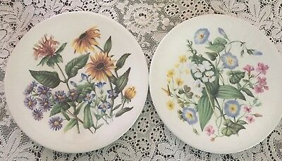 Two Enoch Wedgwood Wild Flowers of the United States Avon Plates