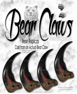 "LARGE 3¼"" BIG Ol' BEAR CLAW REPLICA GRIZZLIES - WILD ANIMAL CLAWS GRIZZLY BEAST"