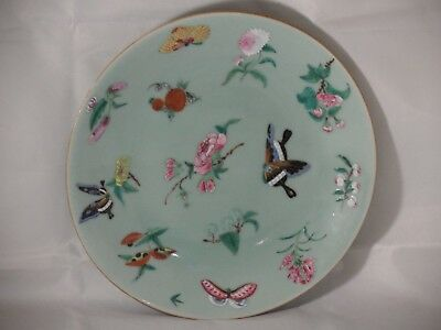 A 19th CENTURY? CHINESE CELADON PLATE FLORAL & BUTTERLIES DAOGUANG? 25cms WIDE